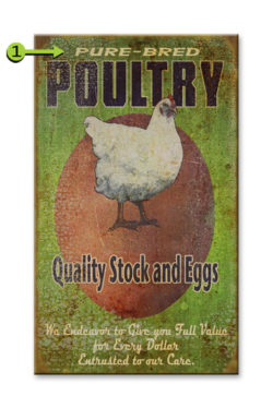 Quality Stock, Eggs and Poultry